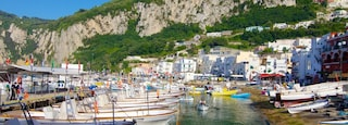 Capri Island showing boating, a bay or harbor and a coastal town