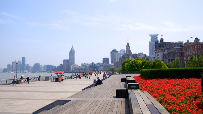 The Bund featuring a city and flowers