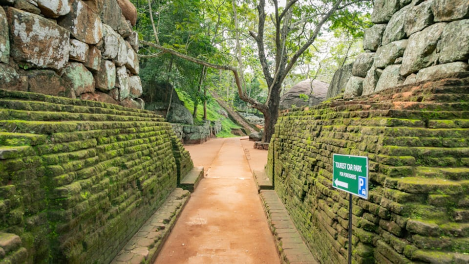 Sigiriya which includes signage and heritage elements