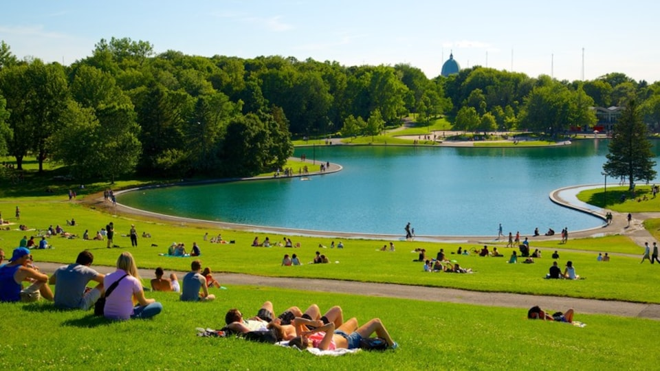 Mount Royal Park featuring landscape views, a pond and picnicing