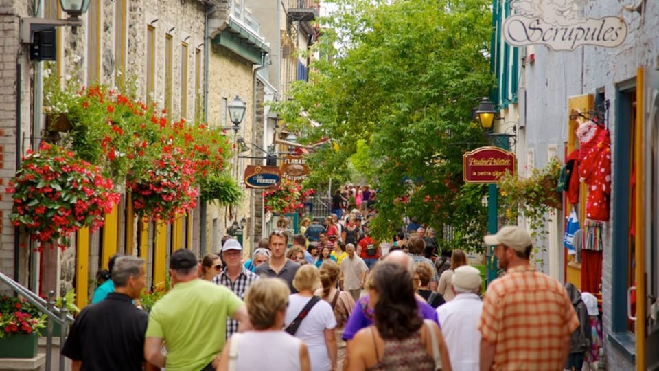 Quartier Petit Champlain which includes street scenes, shopping and a city
