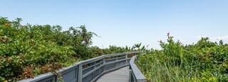 Cape Henry Memorial featuring a bridge