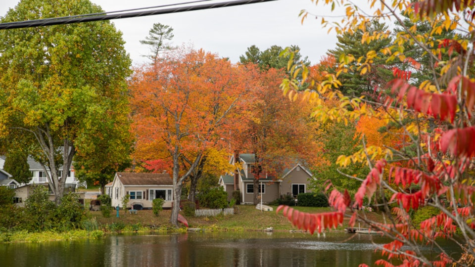 Windham featuring a house, fall colors and a pond
