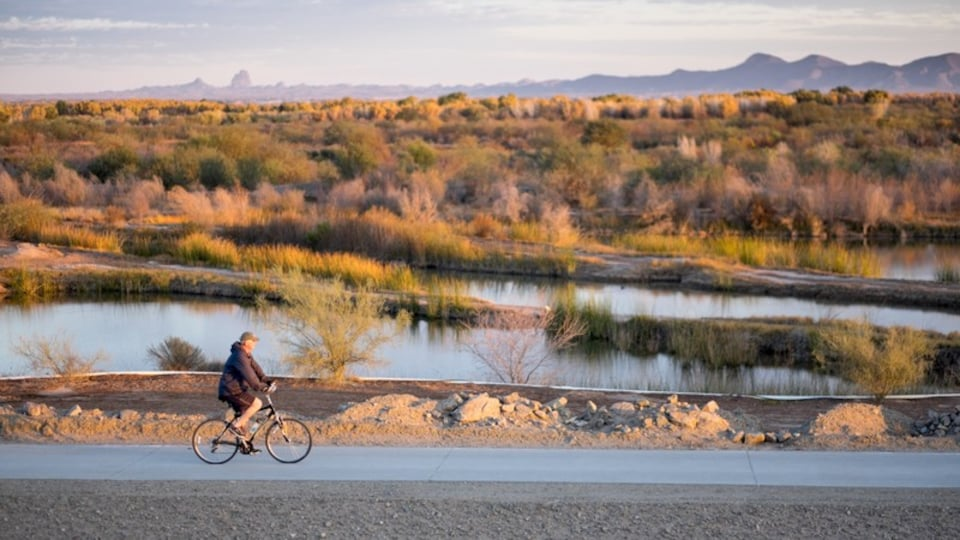 Western Arizona showing cycling, tranquil scenes and a river or creek