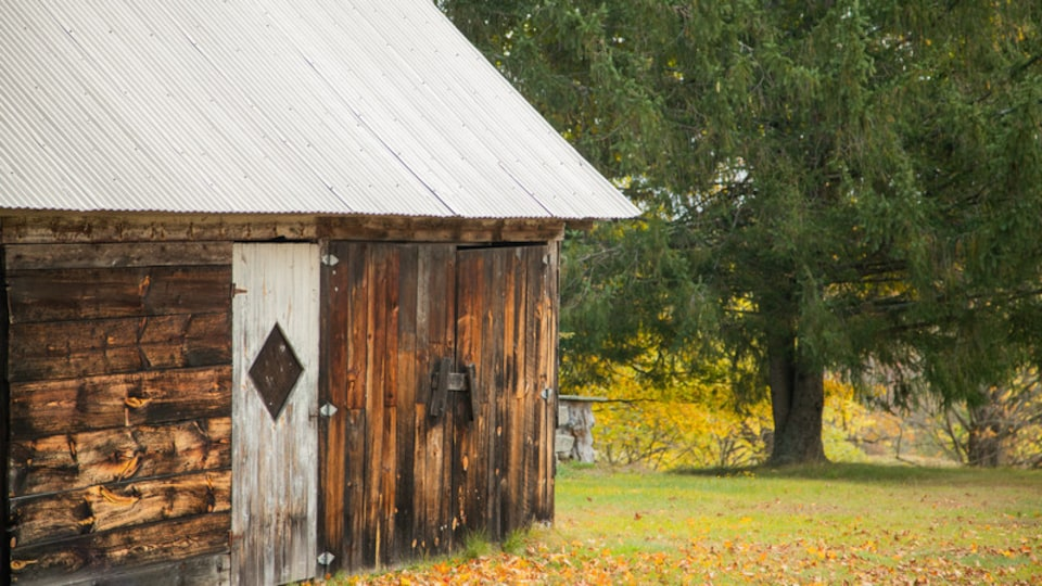 Windham which includes a park, fall colors and heritage elements