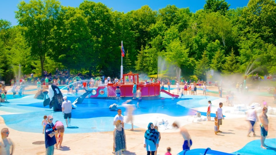 Toronto Zoo featuring a playground, a waterpark and zoo animals