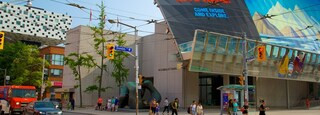 Art Gallery of Ontario which includes signage, street scenes and art
