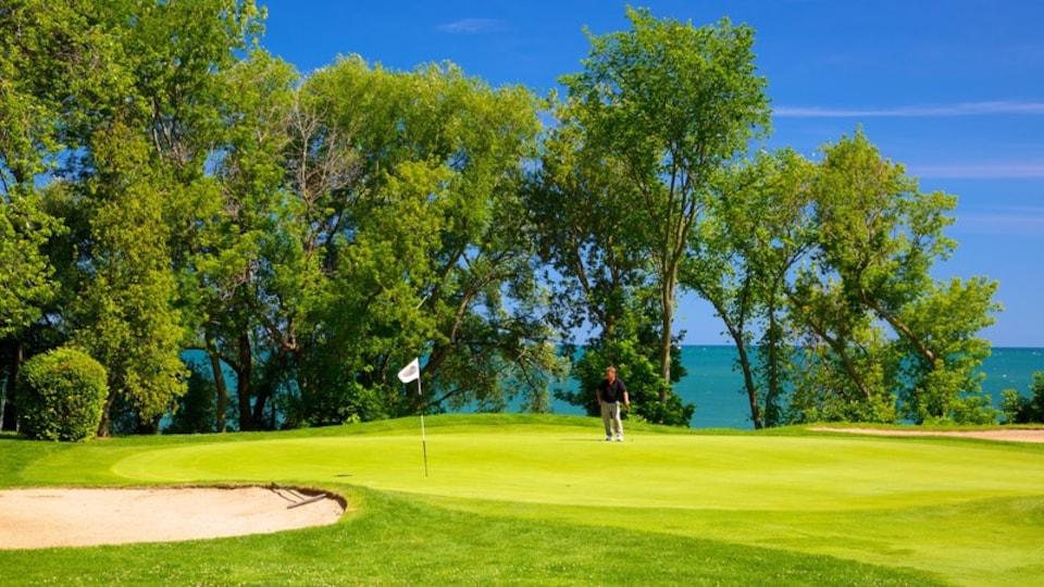 Niagara-on-the-Lake featuring golf, general coastal views and landscape views