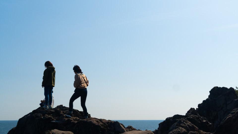 Jogasaki Coast showing general coastal views as well as a couple