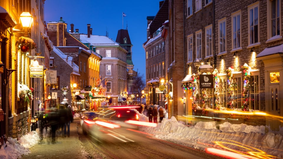 Old Quebec showing a city, night scenes and street scenes