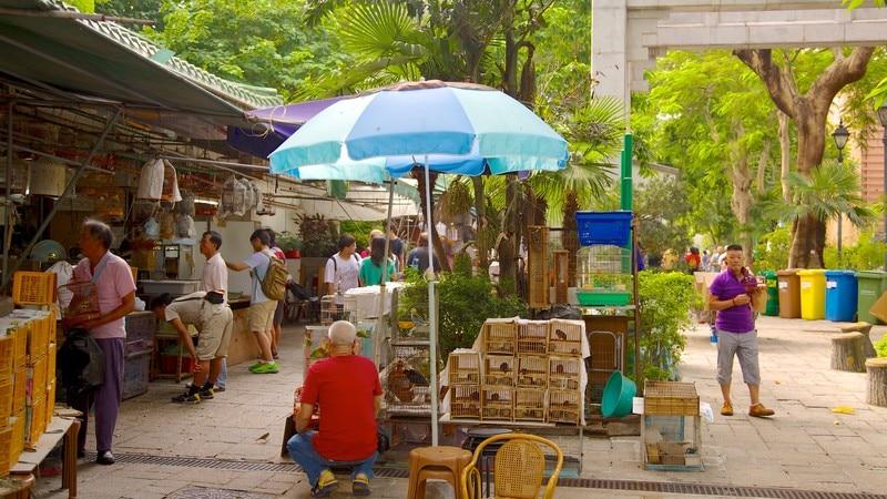 Yuen Po Bird Market