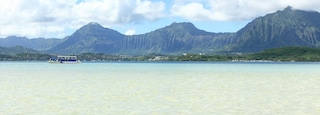 Kaneohe which includes boating, mountains and general coastal views
