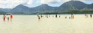Kaneohe featuring mountains, a sandy beach and swimming