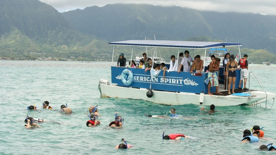 Kaneohe which includes general coastal views and boating as well as a large group of people