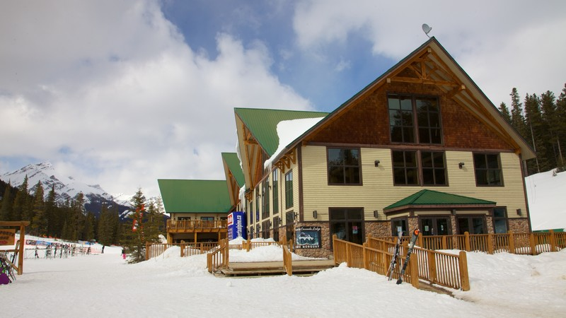 Mount Norquay Ski Resort which includes a luxury hotel or resort and snow