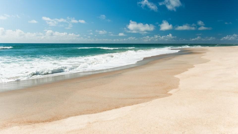 Morehead City which includes a beach