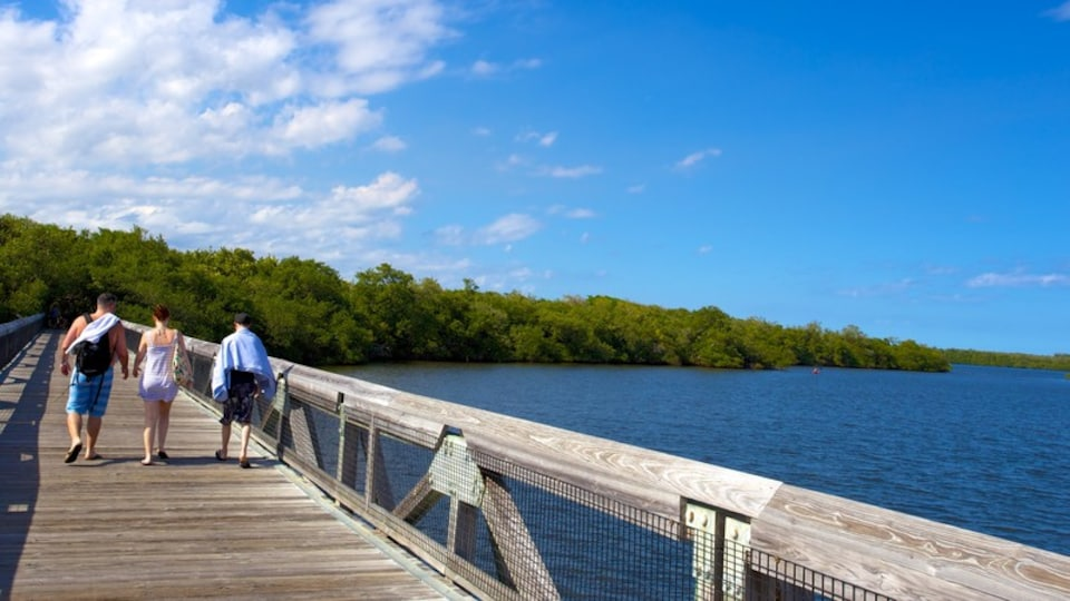 John D. MacArthur Beach State Park which includes a bridge and general coastal views as well as a small group of people