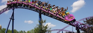 Springfield which includes rides as well as a large group of people
