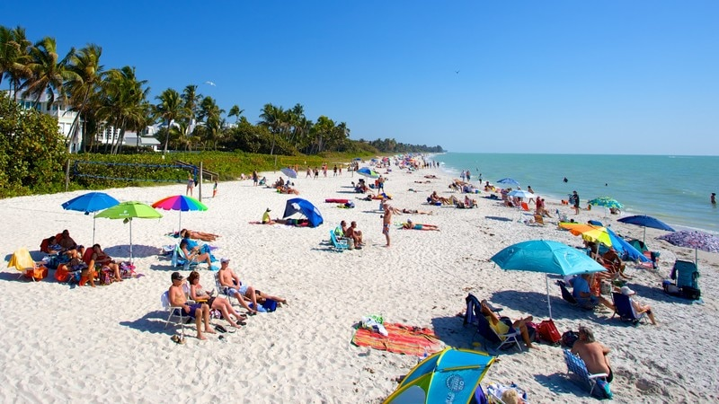 Naples Pier featuring a sandy beach and landscape views as well as a large group of people