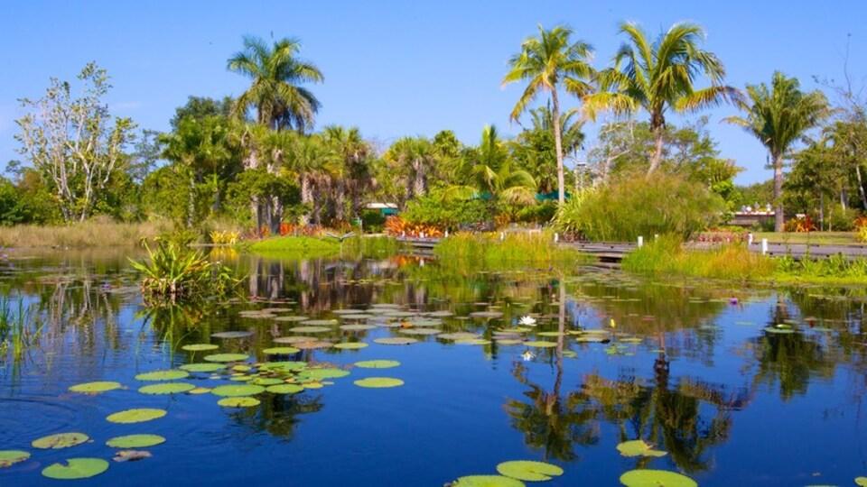 Naples Botanical Garden featuring a park and a pond