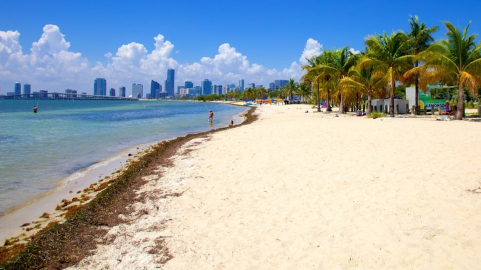 Miami which includes tropical scenes, general coastal views and a beach