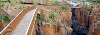 Mpumalanga - Limpopo showing a bridge, views and landscape views
