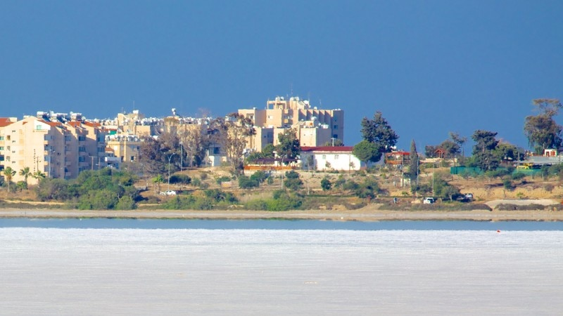 Larnaca Salt Lake