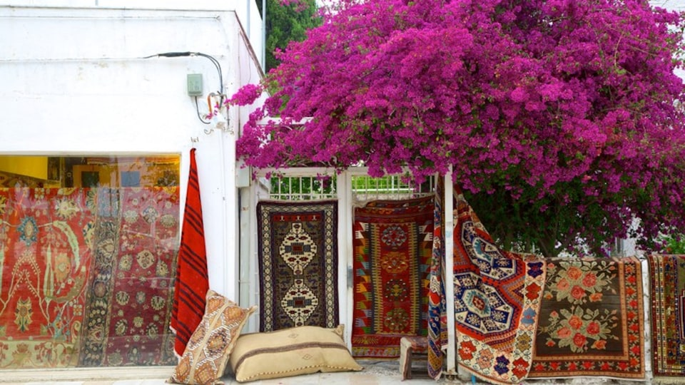 Bodrum showing flowers