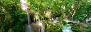 Antalya featuring forest scenes, a bridge and a waterfall