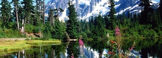 Bellingham which includes a lake or waterhole, snow and mountains