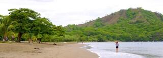 Coco Beach showing a beach