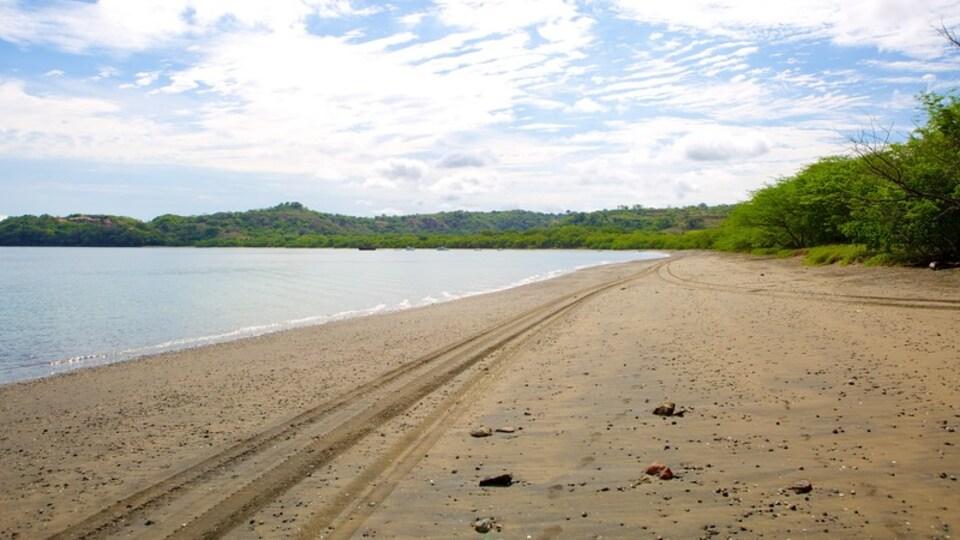 Panama Beach showing a beach
