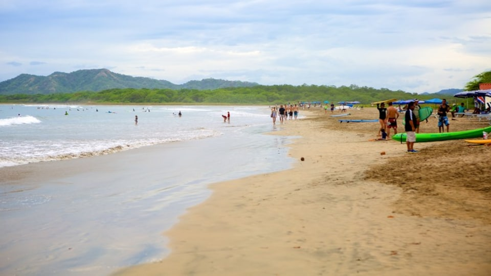 Tamarindo featuring a beach as well as a large group of people