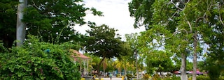 Liberia showing a park