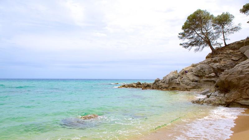 Treumal Beach