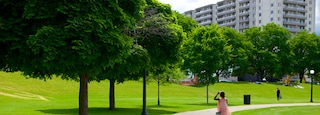 Kitchener which includes a park as well as an individual femail