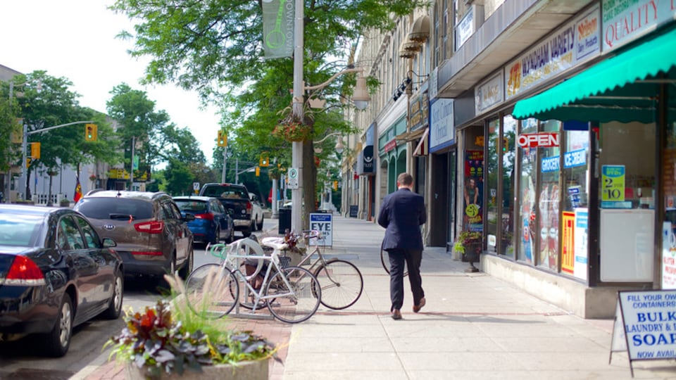 Guelph showing street scenes as well as an individual male