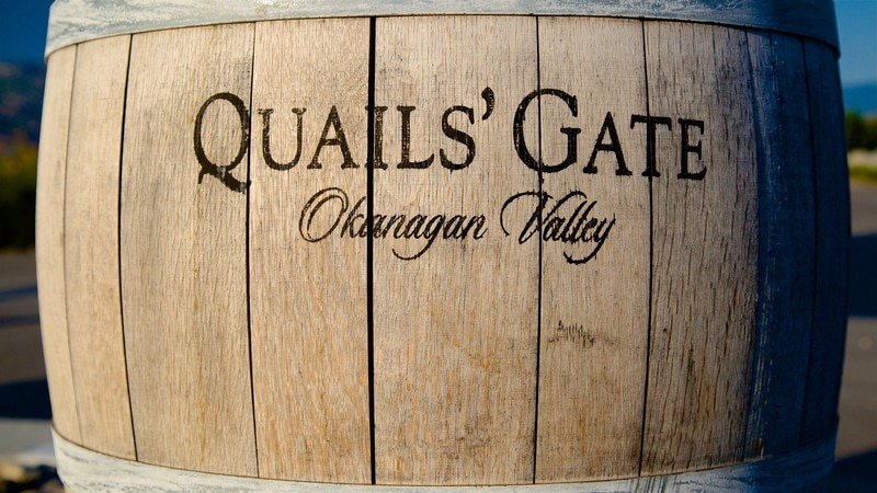 Quails' Gate Estate Winery