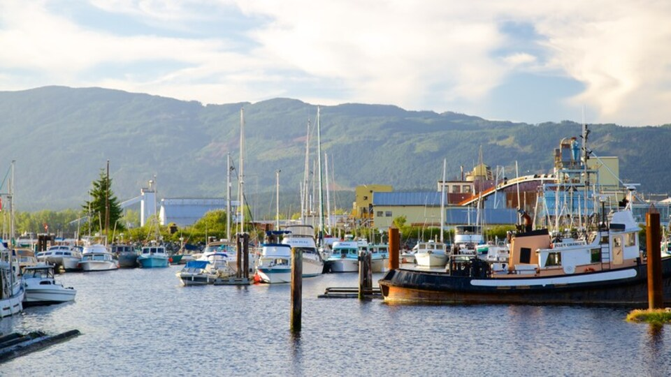 Port Alberni featuring a marina