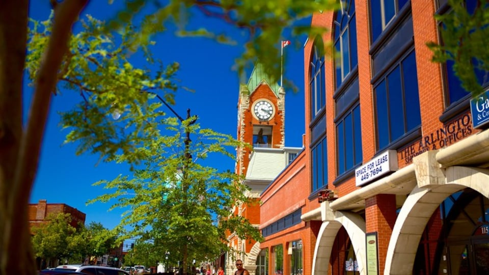 Collingwood featuring heritage architecture