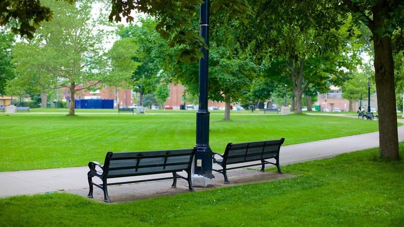 Victoria Park featuring a park