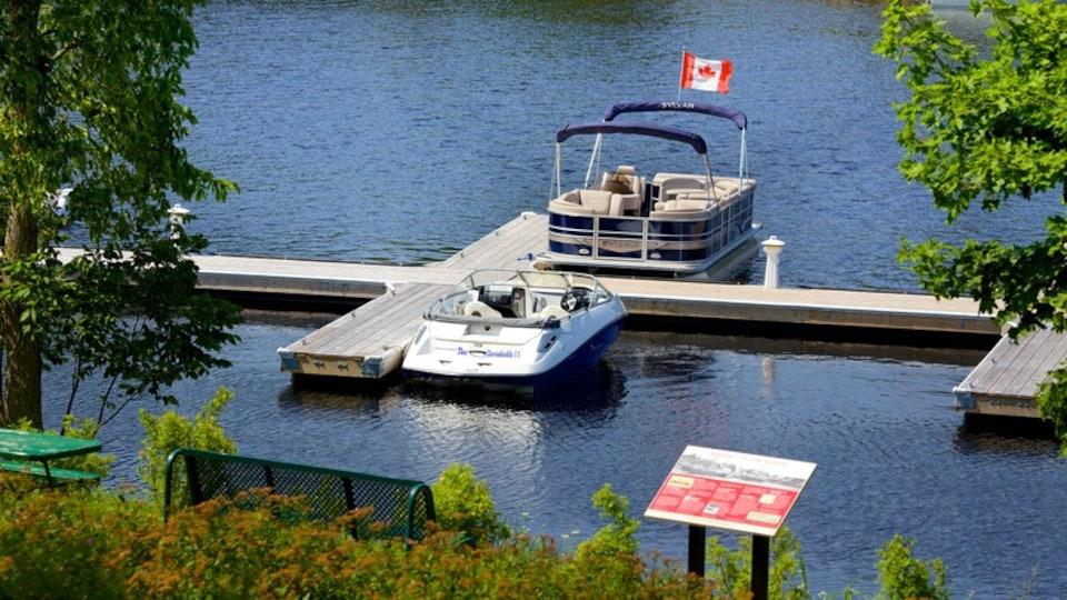 Bridgewater showing a lake or waterhole