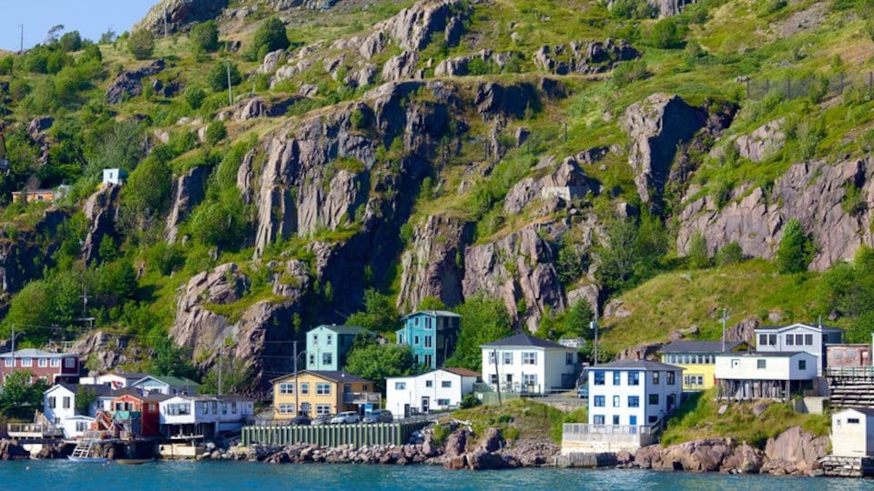St. John\'s featuring a coastal town, mountains and rugged coastline