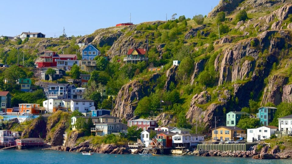 St. John\'s featuring rocky coastline, a coastal town and general coastal views