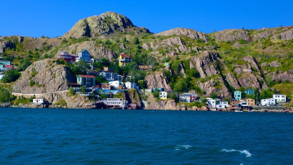 St. John\'s showing a coastal town and rugged coastline