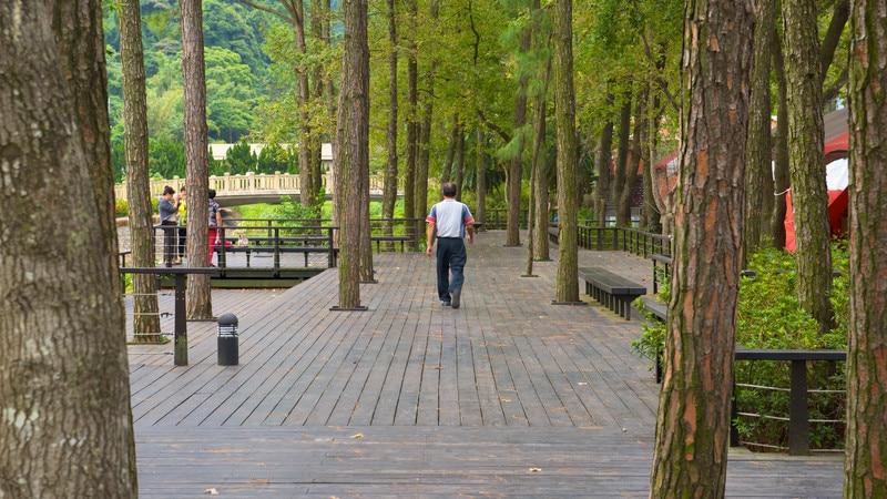 慈湖 / 慈湖陵寢