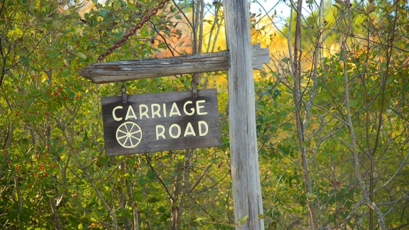Carriage Roads