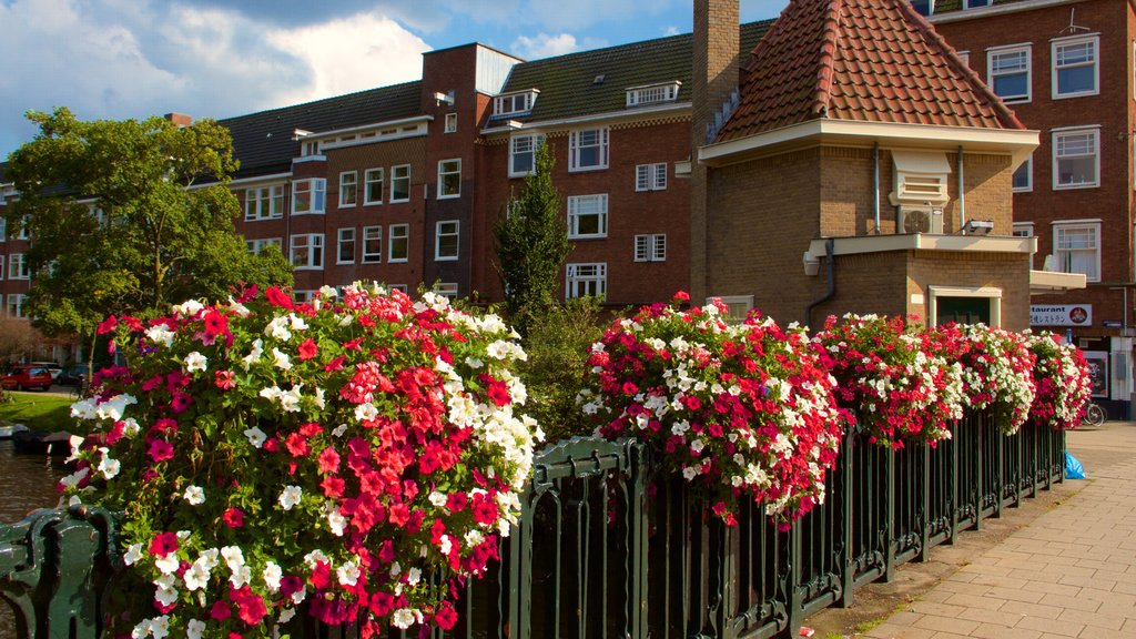 Amsterdam Southeast featuring heritage architecture and flowers
