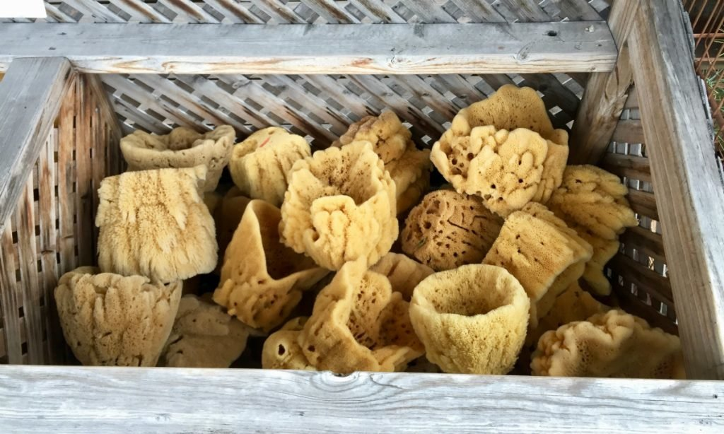 Sponge Docks Florida