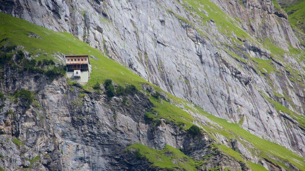Grindelwald ofreciendo una casa y montañas